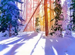 paint places painting wild places with watercolors learn to paint winter s light