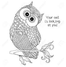 coloring owl coloring book pagesowl pagesadultlt books at
