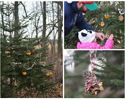 decorating an outdoor edible tree for the animals wilder child