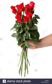 Long Stem Rose Vase Hand Holding A Dozen Long Stem Red Roses Stock Photo Royalty Free