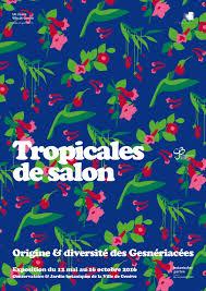 cjb tropicales de salon