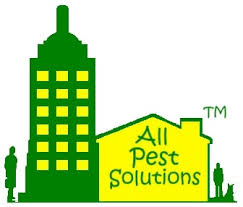 all pest solutions pest 2025 e rd wylie tx