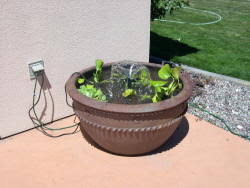 craft projects pond container for your patio at exploring