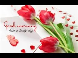 morning beautiful messages sms pictures