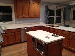 Can Kitchen Cabinets Be Refinished Kitchen Best Way To Paint Cabinets Easiest Way To Paint Cabinets