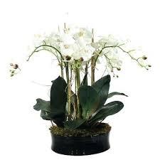 faux orchids faux orchid arrangements kulfoldimunka club