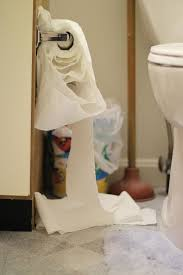 Bad Smell In Bathroom 6 Ways To Reduce Bad Bathroom Smells