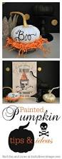 painted pumpkins plus tips for great results decoration