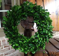 garden variety preserved boxwood wreath 11