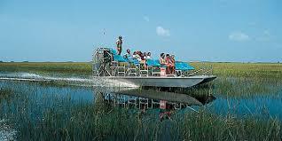 fan boat tours miami gator park airboat tour sparen sie bis zu 55