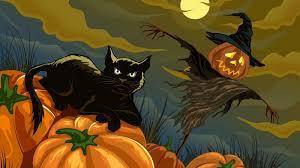 cat in pumpkin illustration black cat halloween wallpaper black