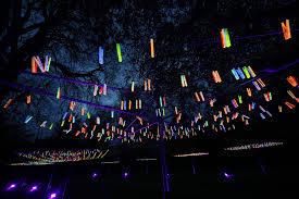 mn landscape arboretum bruce munro light at the arboretum minnesota landscape arboretum