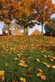 Preparing Your Home For Spring Preparing Your Home For Fall And Winter Wetzel Insurance In Indiana