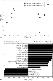 the volatile metabolome of klebsiella pneumoniae in human blood