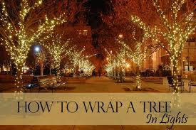 how to wrap a tree in lights designers