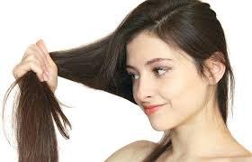 Minyak Zaitun Untuk Memanjangkan Rambut minyak zaitun cara memanjangkan rambut dengan alami news plimbi