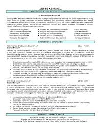 best solutions of sample bank manager resume with additional
