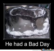 Bad Day Meme - this dog had a bad day by recyclebin meme center