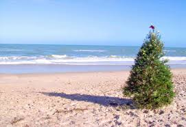 christmas tree on the beach cheminee website
