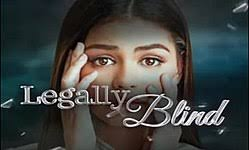 Seeking Gavel Imdb Legally Blind Tv Series Revolvy