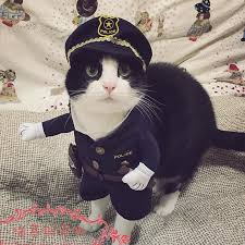 Small Puppy Halloween Costumes Funny Halloween Pet Cat Dog Police Costume Cosplay Dog Police