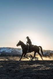 hauk designs colt 45 1079 best cowboy images on pinterest ranch life cattle and cowgirls