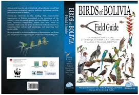birds of bolivia the sixth richest country in bird species has it