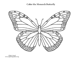 coloring page butterfly monarch butterfly monarch coloring page