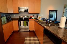 one bedroom apartments uiuc modern one bedroom apartments chaign emotibikers com on uiuc