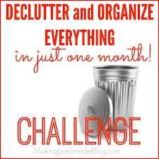 Challenge Tips Declutter And Organize Everything Challenge Lemonade