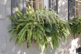 window planter boxes glamorous inspiration home decor inspirations