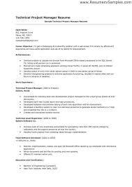 project management resume pdf resume for project manager position project manager cv template