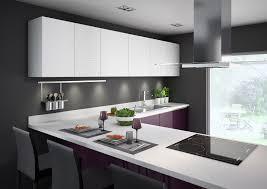 mur cuisine aubergine une cuisine aubergine pour ambiance chic armoires blanches murs