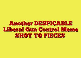 Meme Shot - another despicable liberal gun control meme shot to pieces