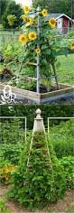 912 best garden structures images on pinterest garden structures
