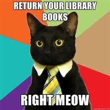 Books Meme - 19 situations that will make library lovers smile lovers library