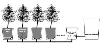 about u2014 alaska grow buckets