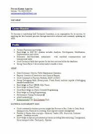 sle resume format for freshers write my essay today buy a descriptive essay i need someone to sap