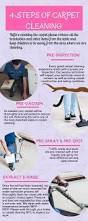 Area Rug Cleaning Tips by 36 Best Carpet Cleaning Infographics Images On Pinterest