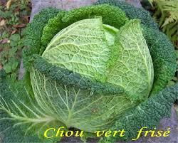 cuisiner un chou vert cuisiner chou vert frais chou vert au lard et ses légumes au