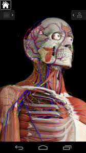essential anatomy 3 apk essential anatomy 3 for orgs 1 1 3 apk obb data file