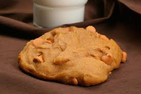 pumpkin cookies with butterscotch chips recipe chowhound