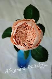 12 besten english rose bilder auf gärten