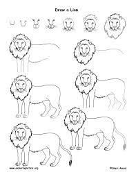 draw lions head tags draw lions draw