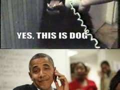 Meme Telephone - obama on the phone meme weknowmemes