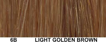 light golden brown hair color chart back for golden brown hair color chart medium hair styles ideas