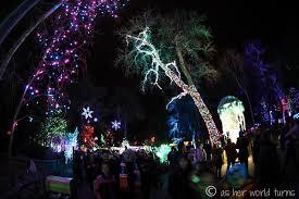 denver zoo lights as her world turns