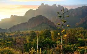 Big Bend National Park Map Things To Do In Big Bend National Park Travel Leisure