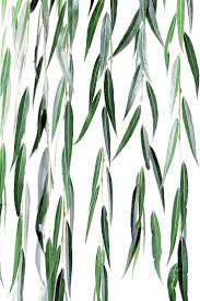 best 25 weeping willow ideas on pinterest willow tree white