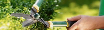 stellenangebote garten und landschaftsbau facharbeiter im garten und landschaftsbau m w lauterwasser
